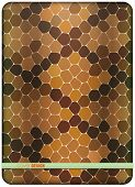 Brown snake skin. Cover design