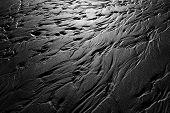 Wet Beach Textures
