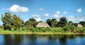 Land of the Seminole