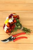 Secateurs with flowers on wooden background