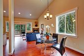 House With Vaulted Ceiling. Open Floor Plan