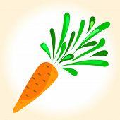 Illustration Of A Ripe Orange Carrot