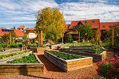 clay courtyard