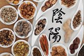 Chinese yin and yang herbal medicine selection on rice paper.  Chinese calligraphy script reads as y