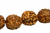 Japa mala (prayer beads) made of rudraksha isolated