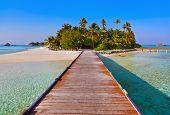 stock photo of tropical island  - Tropical Maldives island  - JPG