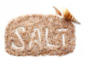 Sea salt and seashell, isolated on white