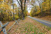 Blue Ridge Mountain Parkway, Virginia