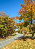 Blue Ridge Mountain Parkway, Virginia