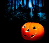 Halloween Night Background With Scary Dark Forest And Pumpkin