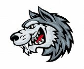 pic of werewolf hunter  - Cartoon angry wolf head isolated on white background - JPG
