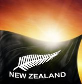 New Zealand silver fern flag in front of bright sky