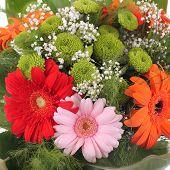 Bright bouquet. Gerbera flowers