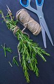 fragrant rosemary
