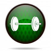 fitness green internet icon
