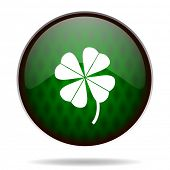four-leaf clover green internet icon