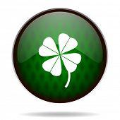 four-leaf clover green internet icon