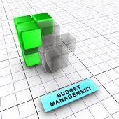 3-Budget management