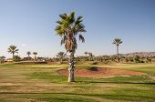 Golf Course In Marrakesh