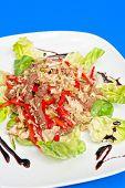 roast beef salad portion on white plate