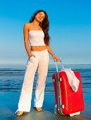 Holiday Baggage Joy