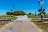 stock photo of texas star  - Railroad Crossing on Old Texas Country Road with Wildflowers Across the Road - JPG