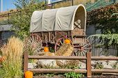 picture of hay bale  - Hay bales and pumpkins add a touch of autumn to this antique covered wagon - JPG
