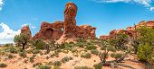 stock photo of parade  - Parade of Elephants in Arches National Park - JPG