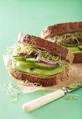 pic of alfalfa  - healthy rye sandwich with avocado cucumber alfalfa sprouts - JPG