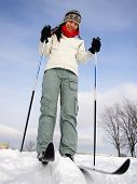 stock photo of nordic skiing  - Cross country skiing on the Plains of Abraham  - JPG