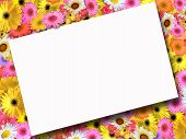 Summer Flower Background With Message poster