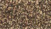 picture of gneiss  - 1x4ft Sample of Brazilian Giallo Boreal granite - JPG