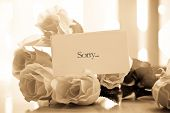 image of condolence  - Apology not on roses on table near window for love and apology concepts - JPG