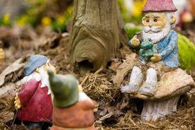 picture of  midget elves  - Sitting garden gnomes talking together and listening - JPG