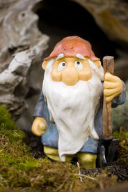 picture of  midget elves  - Garden gnome with shovel and a long white beard - JPG