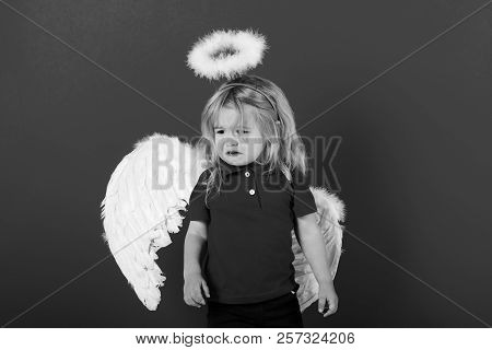 poster of Cupid. Adorable Little Angel Boy With White Feather Wings And Halo, Crying Kid With Sad Face And Blo