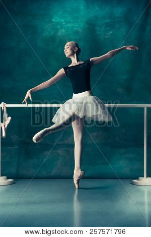 Were visited young teen ballerina with
