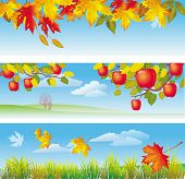 Three autumn banners