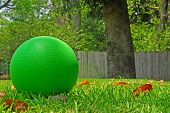 Bright green kickball on grass in summer yard
