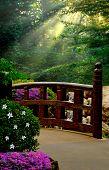 Walkway through beautiful Japanese garden