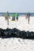 PERDIDO KEY, FL - JUNE 9: Garbage bags filled with potentially tainted seawood lie on the beach as B