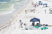 PENSACOLA BEACH - JUNE 23:  BP oil workers attempt to clean oil covered sand on June 23, 2010 in Pen