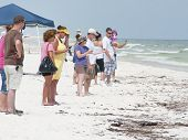 PENSACOLA BEACH - JUNE 23: Beachgoers stand near oil covered sand on June 23, 2010 in Pensacola Beach, FL