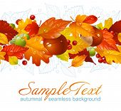 image of glans  - Autumnal seamless horizontal background - JPG