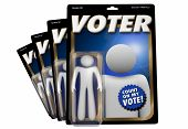 Voter Election Democracy Action Figure 3d Illustration poster