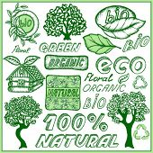 Set ecological doodles symbols