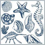 Conjunto de mar Doodle