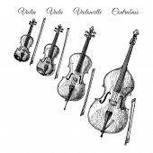 Vector Hand Drawn Illustration Of Bowed String Instruments In Vintage Engraved Style. Violin, Viola, poster