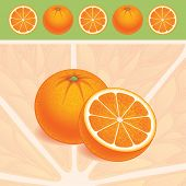 Oranges, vector AI8. Background and objects can be used separately.