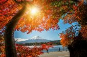 Mount Fuji In Autumn Color, Japan poster